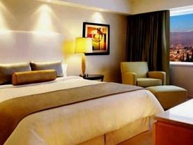 Hotel Intercontinental Mendoza, Guaymallén