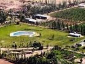Camping Viñas de Vieytes, Maipú
