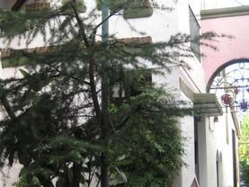 San Telmo Colonial, Ciudad de Buenos Aires