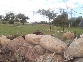 Cabañas Y Departamentos Bettylu, Villa Cura Brochero