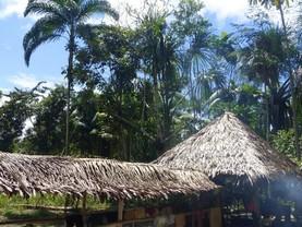 Latitud Sur, Iquitos